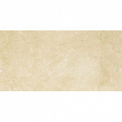 PARADYZ INSPIRATION BROWN 30x60